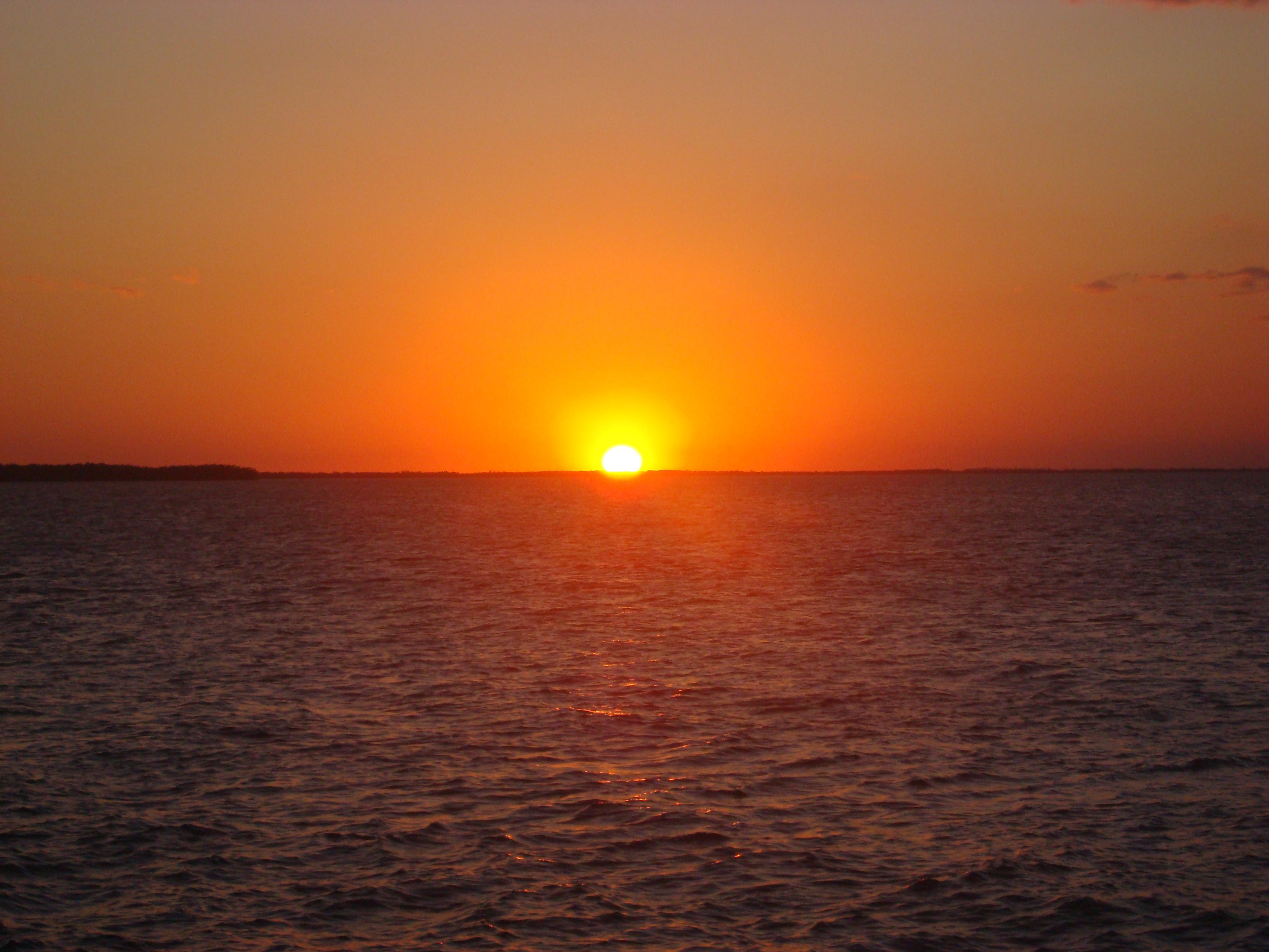 florida seaside sunset magical creature kayak